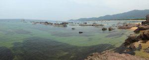Nước biển trong xanh tận đáy.